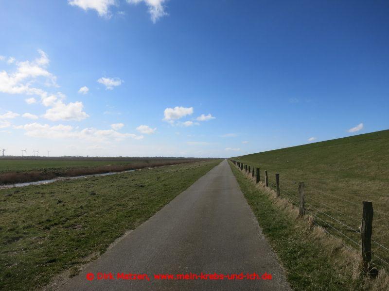 schnurgerader Radweg